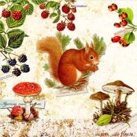 Lunch Servietten Squirrel