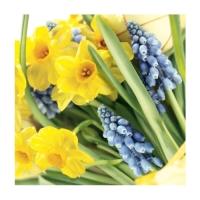 Servietten 25x25 cm - Spring Time