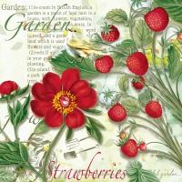 Servietten 33x33 cm - Strawberry Garden