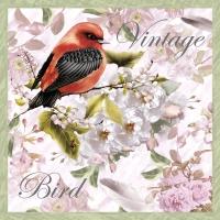 Servietten 33x33 cm - Vintage Vogel