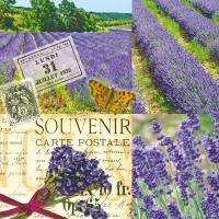 Servietten 33x33 cm - Lavender Scent