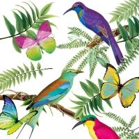 Servietten 33x33 cm - Tropical Birds