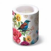 Dekorkerze Lantern Bird of Paradise