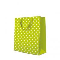 10 Geschenktaschen - Dotsy Check  kiwi large