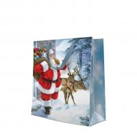 10 Geschenktaschen - Santa is coming