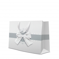 10 Geschenktaschen - Occasional Gift silver horizontal