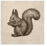 Servietten 33x33 cm - We care Squirrel