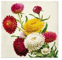 Servietten 33x33 cm - Strawflowers