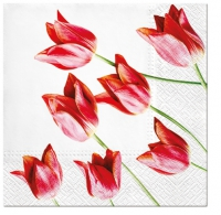 Servietten 33x33 cm - Red Tulips