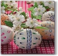 Lunch Servietten Eggs on Chequered