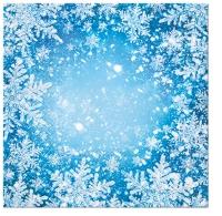 Servietten 33x33 cm - Frosty Window