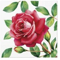 Servietten 33x33 cm - Spezielle Rose