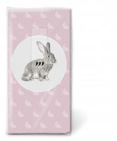 Taschentücher - Portrait des Kaninchens