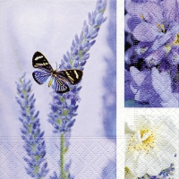 Servietten 24x24 cm - Dream of lavender