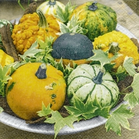 Servietten 25x25 cm - Pumpkins in a bowl