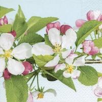 Servietten 25x25 cm - Apple blossom