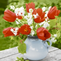 Servietten 25x25 cm - Rote Tulpen