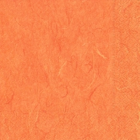Servietten 25x25 cm - Pure orange