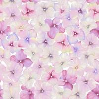 Servietten 33x33 cm - Spring snowflakes