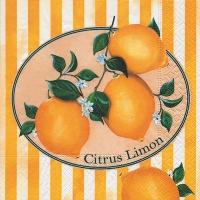 Lunch Servietten Citrus Limon