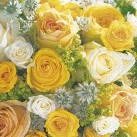 Servietten 33x33 cm - Bouquet of roses