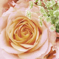 Servietten 33x33 cm - Big rose