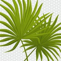Servietten 33x33 cm - Palm branch