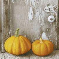 Servietten 33x33 cm - Two pumpkins