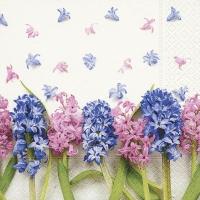 Servietten 33x33 cm - Hyacinths