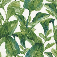 Servietten 33x33 cm - Exotic leaves
