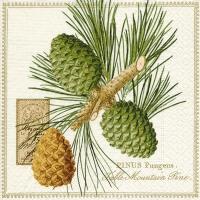 Servietten 33x33 cm - Mountain pine