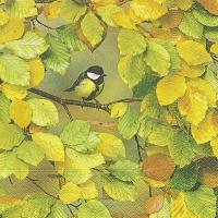 Servietten 33x33 cm - Fall is here
