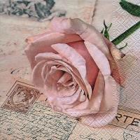 Servietten 33x33 cm - Postcard rose