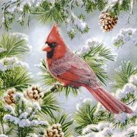 Servietten 25x25 cm - Red cardinal