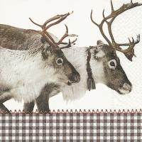 Servietten 33x33 cm - Reindeer