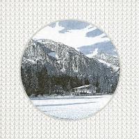 Servietten 33x33 cm - Alpes