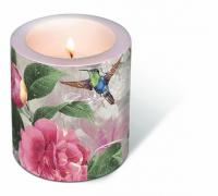 Dekorkerze - Kolibri-Tanz