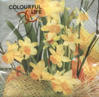 Servietten 24x24 cm - daffodil blossoms