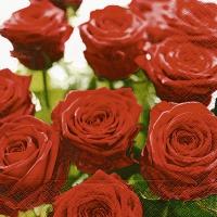 Servietten 33x33 cm - Splendid roses