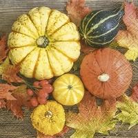 Lunch Servietten Pumpkin collection