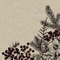 Servietten 33x33 cm - Botanical Xmas