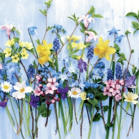 Servietten 25x25 cm - Spring flowers