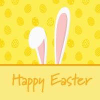 Servietten 33x33 cm - Bunny Ears