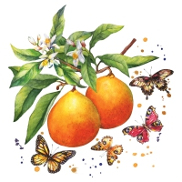 Servietten 25x25 cm - Fruity Butterflies