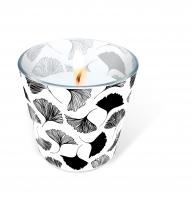 Glaskerze - Candle Glass Ginkgo