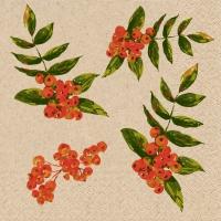 Servietten 24x24 cm - Rowan berry pattern