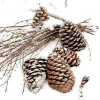 Servietten 33x33 cm - Cones in snow