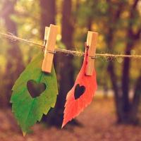 Servietten 33x33 cm - Love Fall