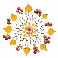 Servietten 33x33 cm - Leaves and Berries