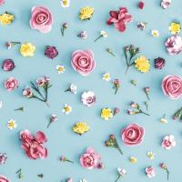 Servietten 33x33 cm - Spring Melody